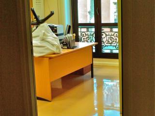 Entretien sol thermoplastique - bureau et entreprises - C. Darmanin