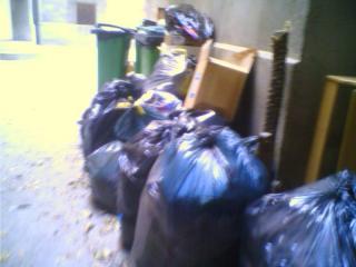 Débarrassage des poubelles et encombrants